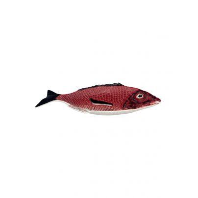Fat 42 cm rød fisk