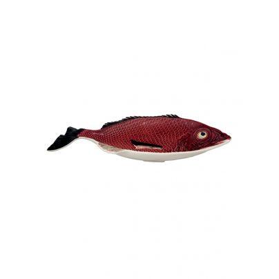 Fat 51 cm rød fisk